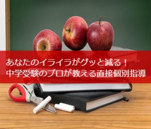 あなたのイライラがグッと減る! 中学受験のプロが教える直接個別指導